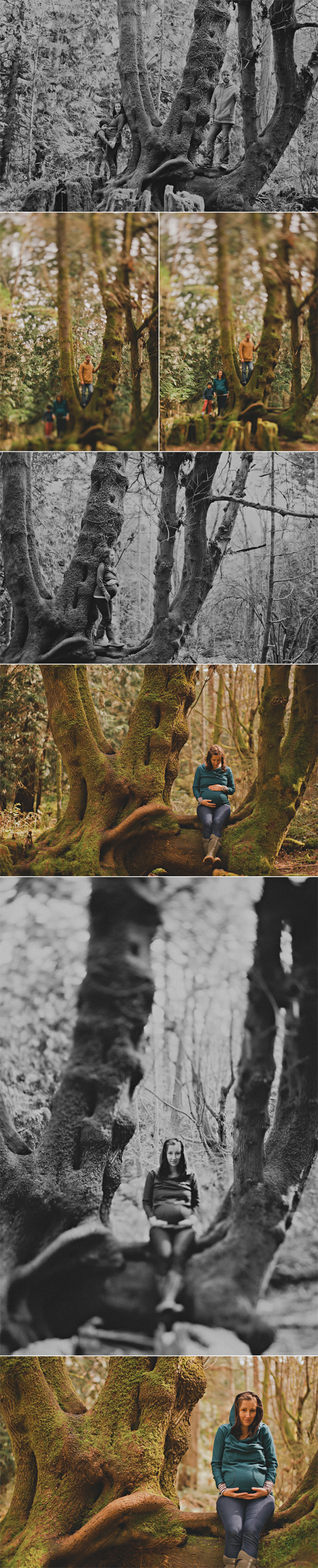 lifestyle family & maternity photographs on beautiful hornby island, the gulf islands, vancouver island, bc (3)