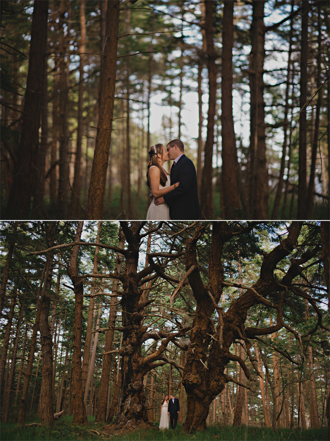 candid portraits of a bride & groom in the old growth forest in helliwell park, hornby island, bc