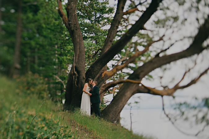 bride & groom by a huge arbutus tree, hornby island, bc