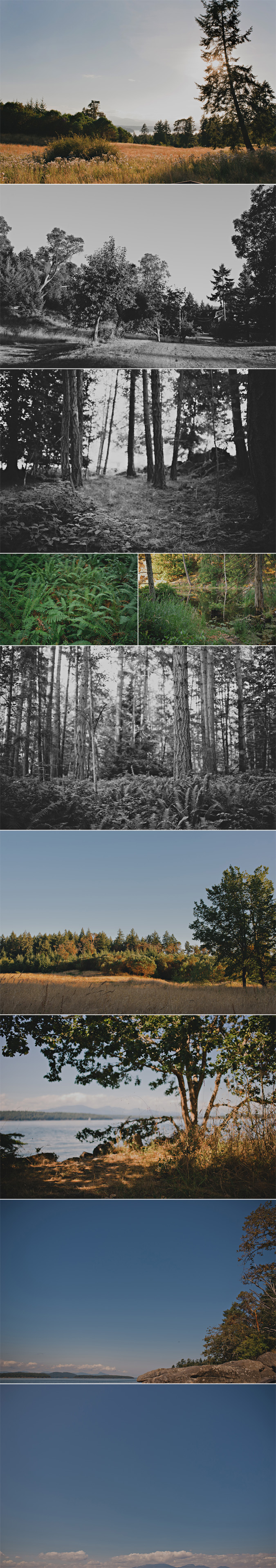 galiano wedding photographer