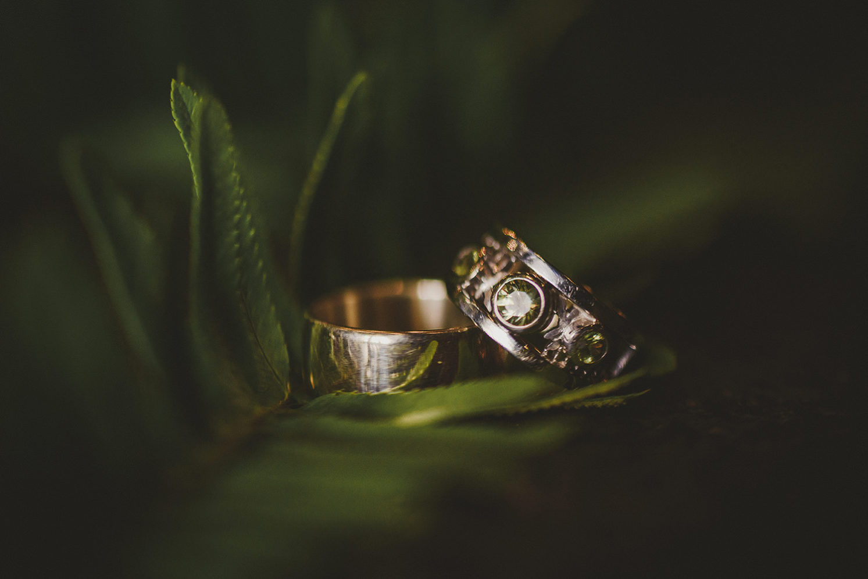 wedding rings in ferns