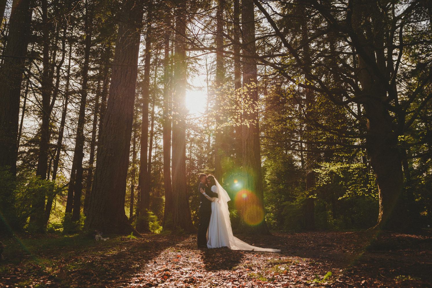 sun flare through the trees on a bride & groom embracing in the forest