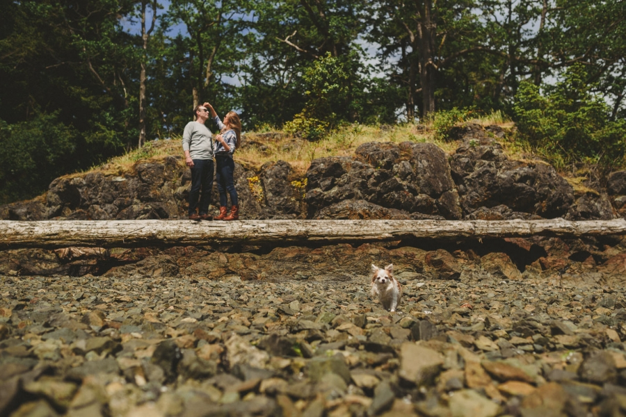 nanaimo engagement session couple on beach with dog in foreground