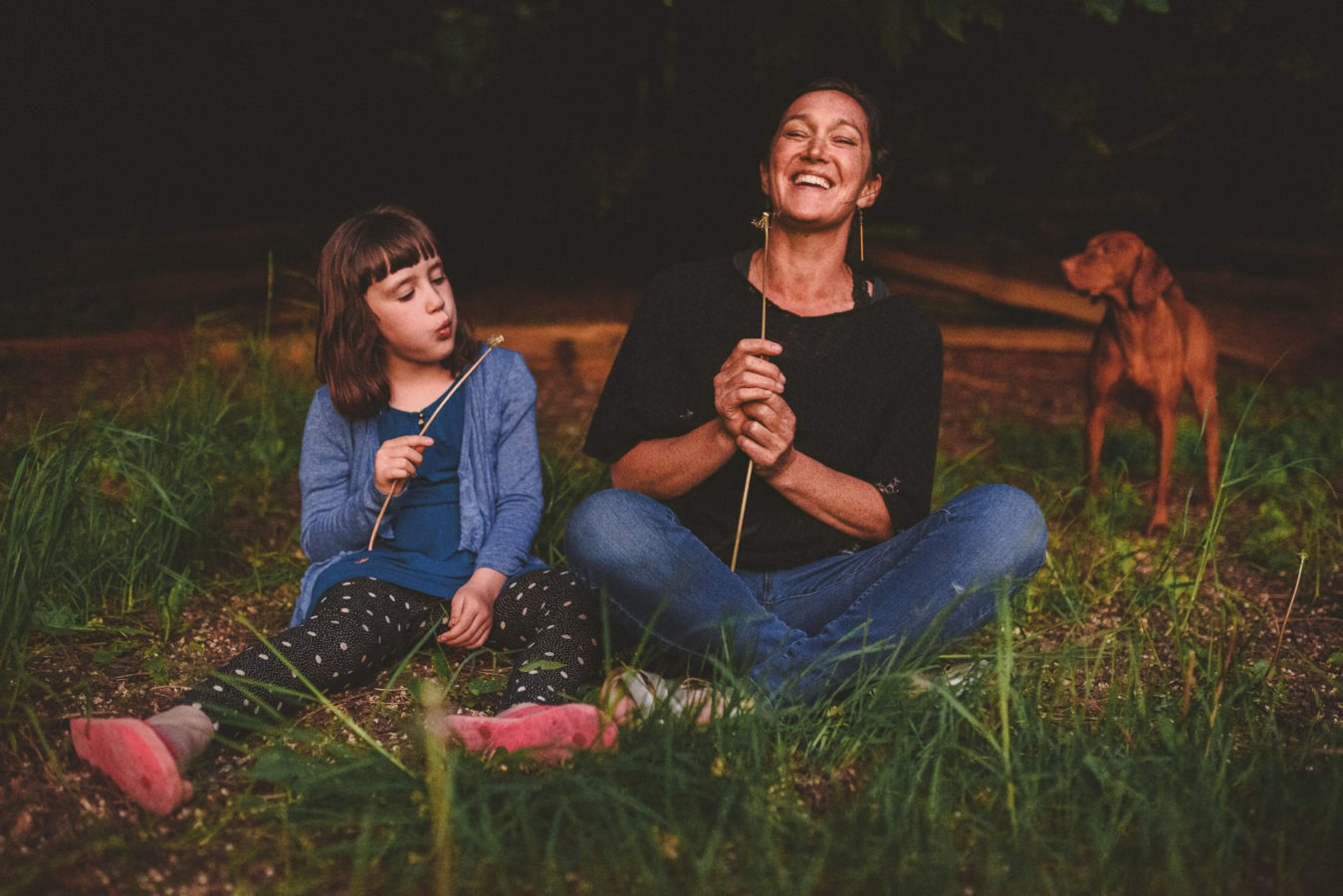 mom and daughter sitting in the evening grass, kid blowing a dandelion and the mom laughing