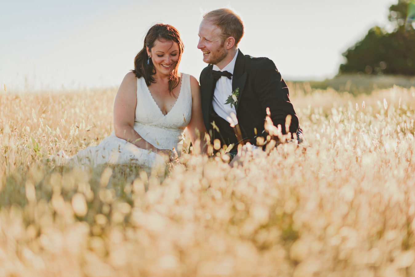 bride and groom in the tall golden grassy on their wedding day