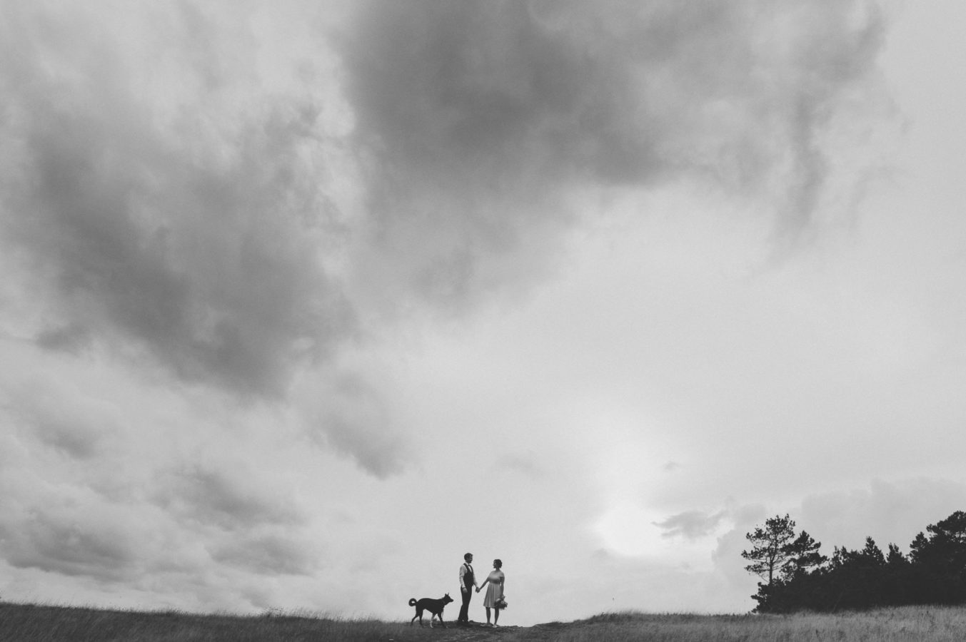 bride and groom and their dog standing on a grassy field with a big stormy sky above them