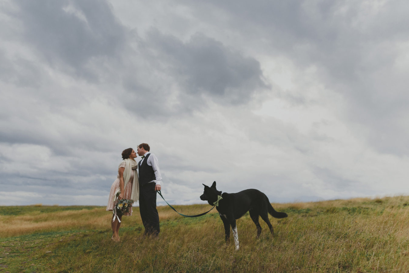 dog on a leash looking at a bride and groom kissing on a grassy field under a stormy sky